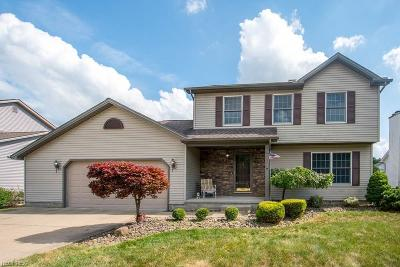 Austintown Single Family Home For Sale: 2859 Spring Meadow Cir