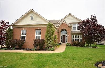 Avon Single Family Home For Sale: 36072 Astoria Way