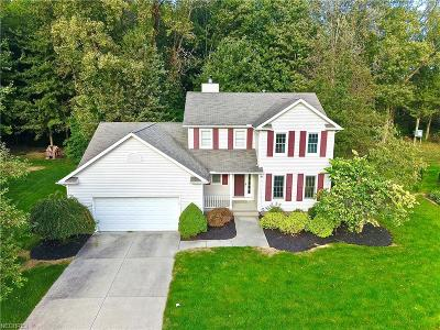 Painesville Township Single Family Home For Sale: 240 Mountainside Dr