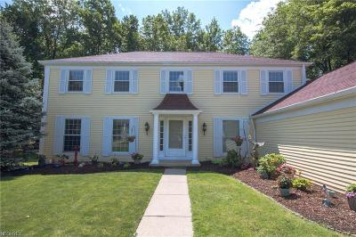 Strongsville Single Family Home For Sale: 17529 Fairfax Ln