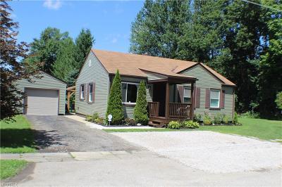 Geneva Single Family Home For Sale: 144 Lawnfield Ct