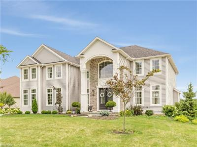 Summit County Single Family Home For Sale: 3355 Suffolk Downs