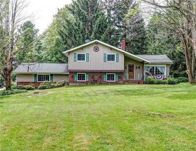 Chardon Single Family Home For Sale: 11569 Thwing Rd
