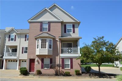 Broadview Heights Condo/Townhouse For Sale: 806 Tollis Pky #806