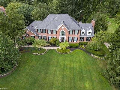Westlake Single Family Home For Sale: 3172 South Windsor Ct
