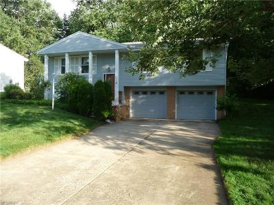 Twinsburg Single Family Home For Sale: 2410 Warren Parkway