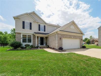 Avon Single Family Home For Sale: 35525 Bentley Dr
