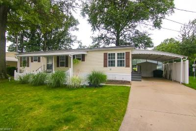 Olmsted Falls Single Family Home For Sale: 21 West Dr