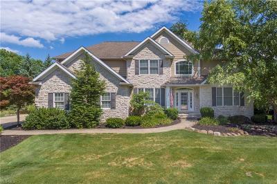 Medina Single Family Home For Sale: 6285 Highland Meadows Dr
