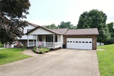 Zanesville Single Family Home For Sale: 225 Rusty Rifle Rd
