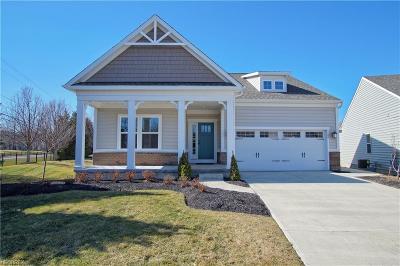 Painesville Township Single Family Home For Sale: 1180 Vista Lago Cir