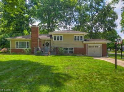 Poland Single Family Home For Sale: 236 Evergreen Dr