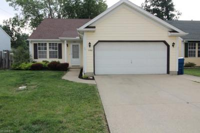 North Ridgeville Single Family Home For Sale: 5960 Eastview Ave
