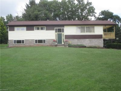 Zanesville Single Family Home For Sale: 3435 Boggs Rd