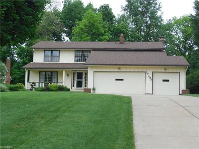 Solon Single Family Home For Sale: 37485 Bunker Hill Dr