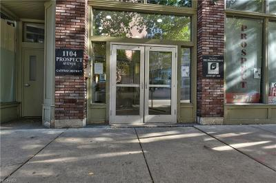 Cleveland Condo/Townhouse For Sale: 1104 Prospect Ave East #401
