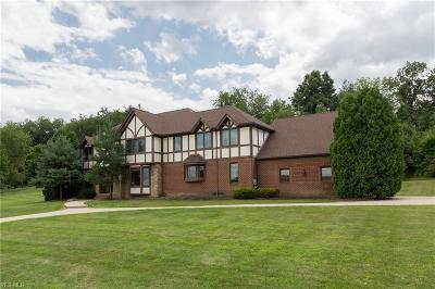 Summit County Single Family Home For Sale: 4700 Barnsleigh Dr