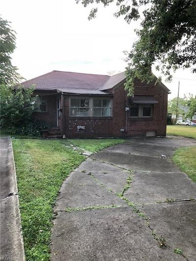 Youngstown OH Single Family Home For Sale: $49,900