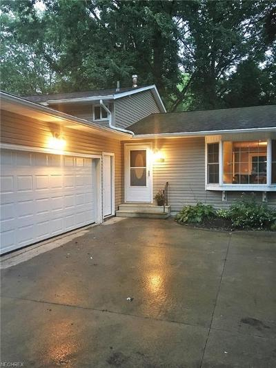 North Ridgeville Single Family Home For Sale: 34139 Gail Dr