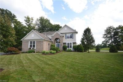 Geauga County Single Family Home For Sale: 131 Williamsburg Ct