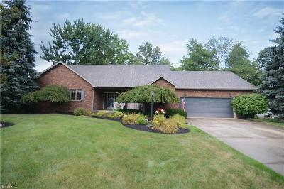 Youngstown Single Family Home For Sale: 5376 South Saratoga Ave