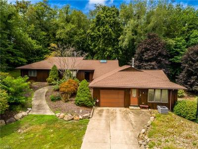 Summit County Single Family Home For Sale: 587 East Nimisila Rd