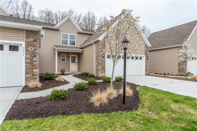 Lorain Single Family Home For Sale: 3554 Perry Ct #Skylark