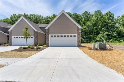Lorain Single Family Home For Sale: 3558 Perry Ct #Ashville