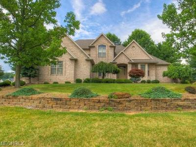 Canfield Single Family Home For Sale: 3955 Montereale Dr