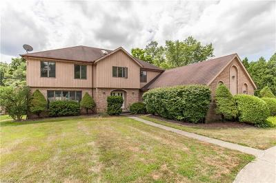 Brecksville Single Family Home For Sale: 7360 Old Quarry