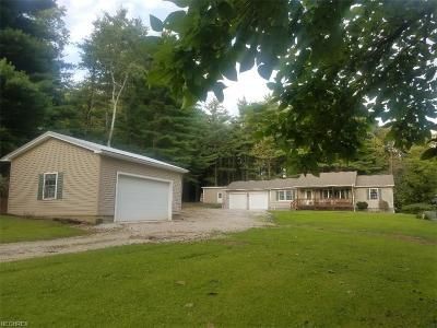 Ashtabula County Single Family Home For Sale: 2112 State Route 46 North