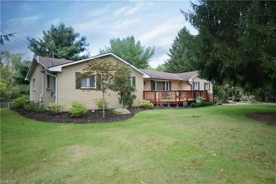 Canfield Single Family Home For Sale: 3130 Paradise Ave