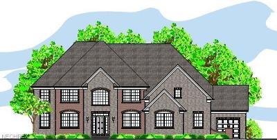 Avon Single Family Home For Sale: 36297 Ravinia Ln