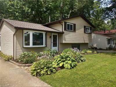 North Ridgeville Single Family Home For Sale: 5654 Olive Ave