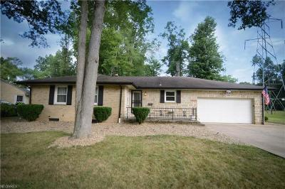 Youngstown Single Family Home For Sale: 770 Truesdale Rd