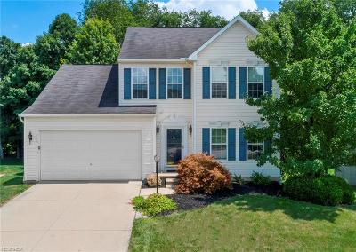 Copley Single Family Home For Sale: 143 Weatherstone Ct