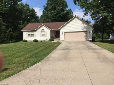 Youngstown Single Family Home For Sale: 3716 Oakwood Ave