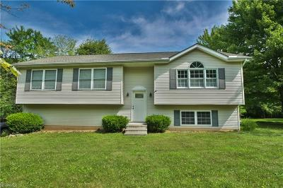 Geauga County Single Family Home For Sale: 10020 Edwards Ln