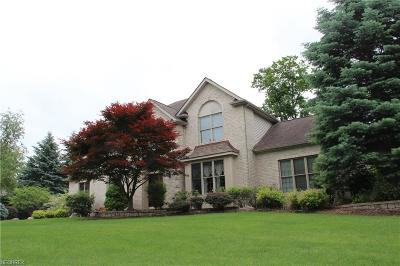 Hinckley Single Family Home For Sale: 2292 Country Brook Dr
