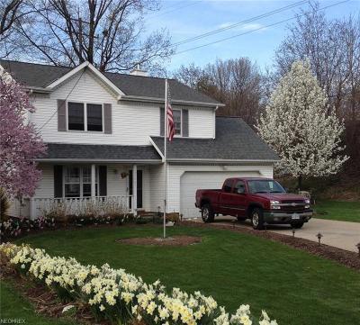 Eastlake Single Family Home For Sale: 35461 Lake Shore Blvd