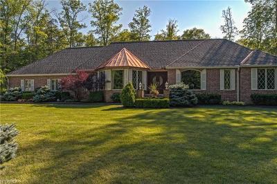 Newbury Single Family Home For Sale: 10885 Scranton Woods Trl
