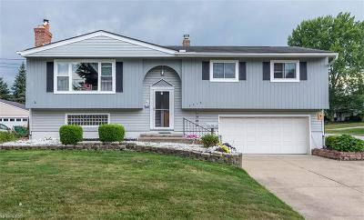 Twinsburg Single Family Home For Sale: 2016 Presidential Pky