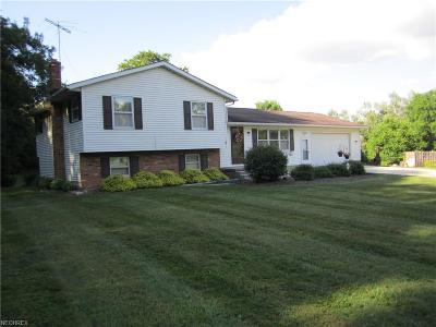 Seville Single Family Home For Sale: 8128 Lake Rd
