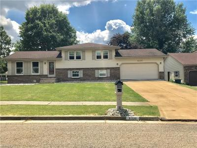 Youngstown Single Family Home For Sale: 6030 Yorktown Ln
