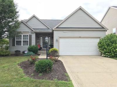 Wadsworth Single Family Home For Sale: 876 Queens Gate Way