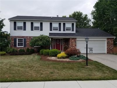 Huron County Single Family Home For Sale: 125 Fairway Cir