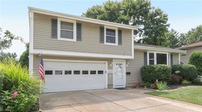 Twinsburg Single Family Home For Sale: 9389 Gettysburg Dr