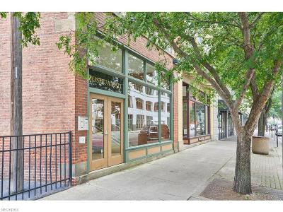 Cleveland Condo/Townhouse For Sale: 1148 Prospect Ave East #C