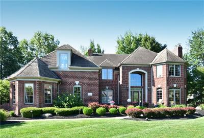 Cuyahoga County Single Family Home For Sale: 3153 Chatham Ct