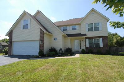 Licking County Single Family Home For Sale: 58 Habersac Ave